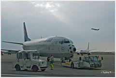 Düsseldorf - Flughafen - Lufthansamaschine bei der Wartung und Beladung vor dem Start