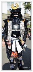 Düsseldorf - Japan-Fest 2014 - Samurai
