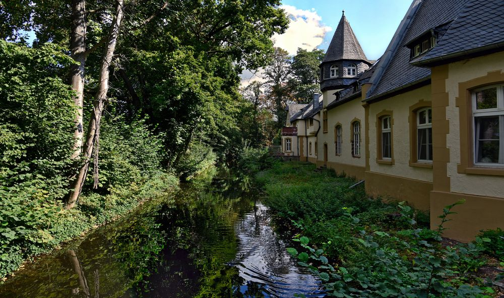 Düsseldorf - Schlosspark Eller -