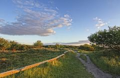 Duhner Heide 03