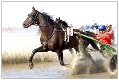 Duhner Wattrennen 2006 , oder und ...