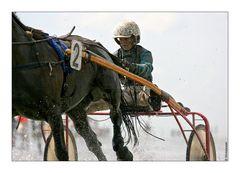 Duhner Wattrennen 2007 (II)