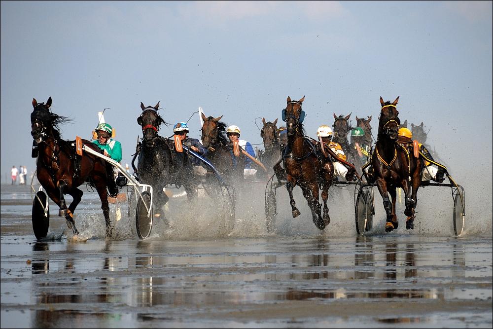 Duhner Wattrennen 2010 IV