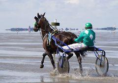 Duhner Wattrennen 2012 #5