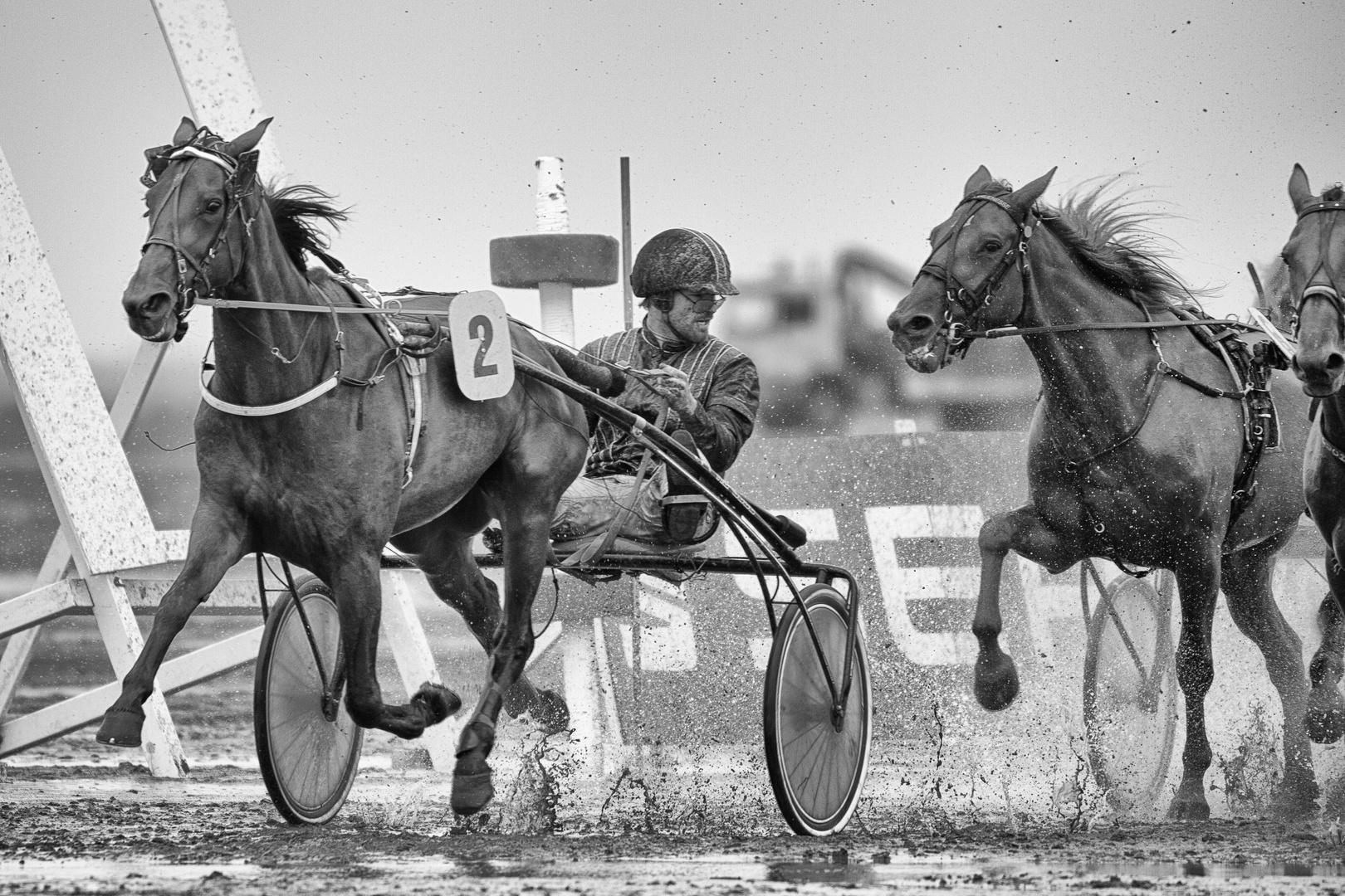 Duhner Wattrennen 2014 - 10