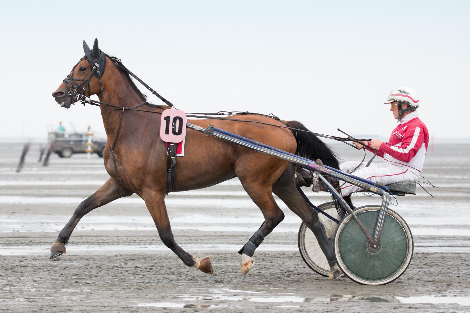 Duhner Wattrennen 2014 - 7