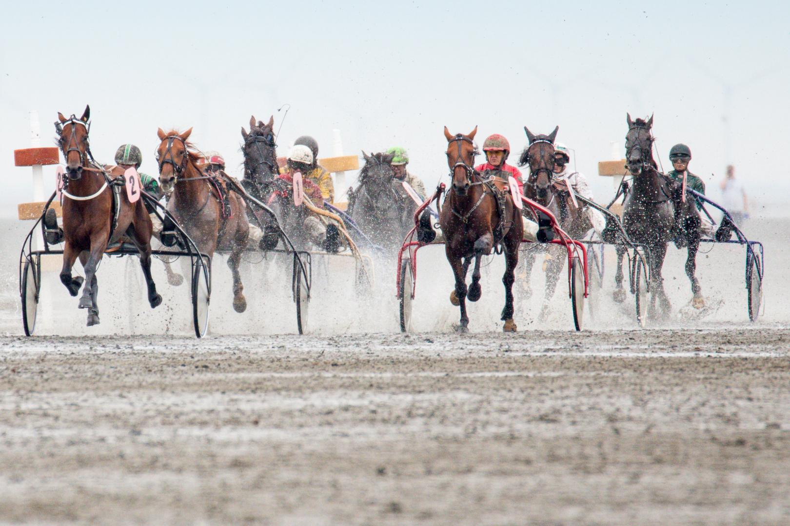 Duhner Wattrennen 2014 - 9