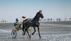 Duhner Wattrennen 2019