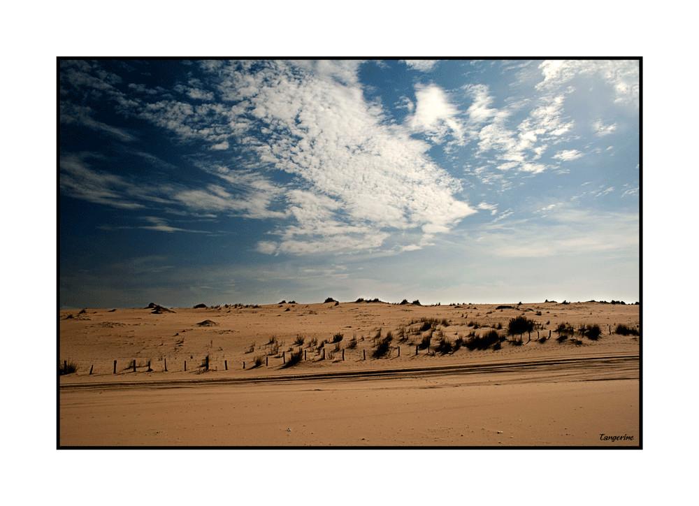 Dunas en Doñana