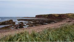 Dunbar-Beach