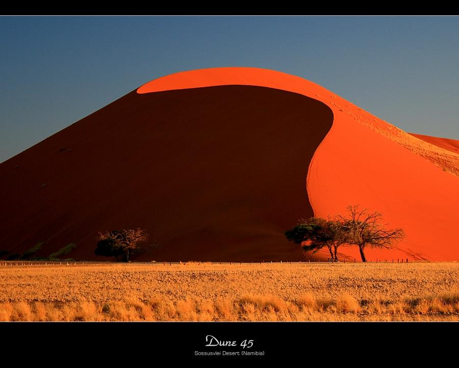 Dune 45 Sossusvlei Desert Namibia Photo Image Africa