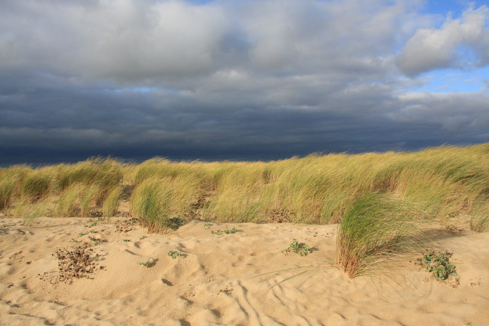 Dune sous ciel grondant !