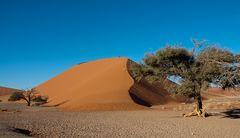 dune walking ~3~