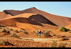 <^dune2^>