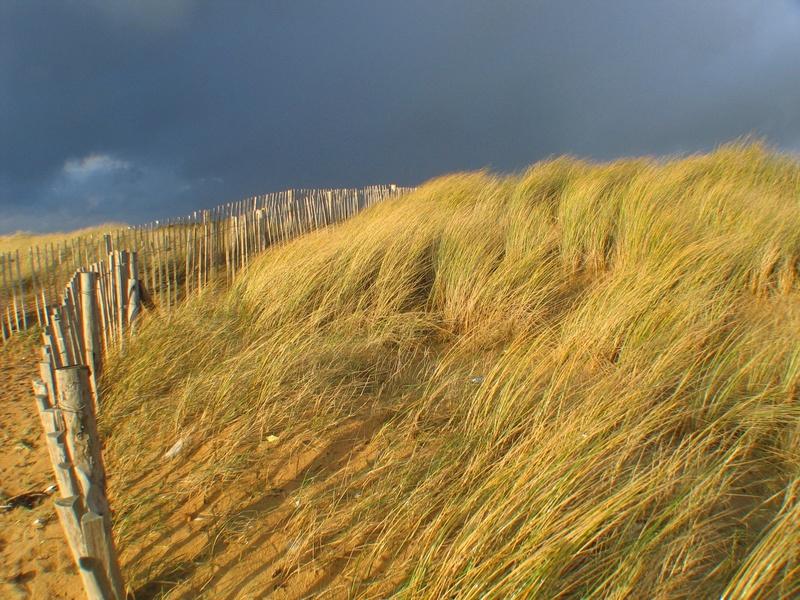 Dunes Baie d'Audierne
