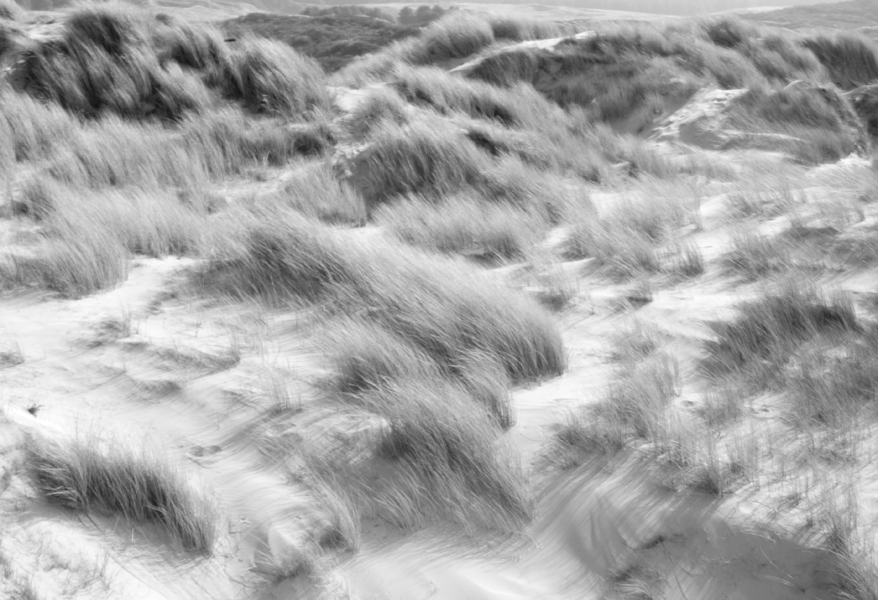 Dunes de Quend Plage