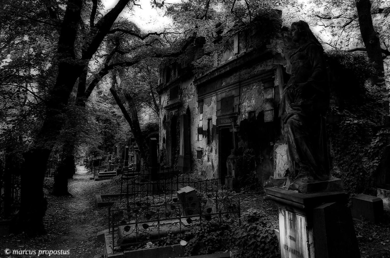 Dunkel und traumhaft..