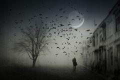 Dunkel war's, der Mond schien helle......