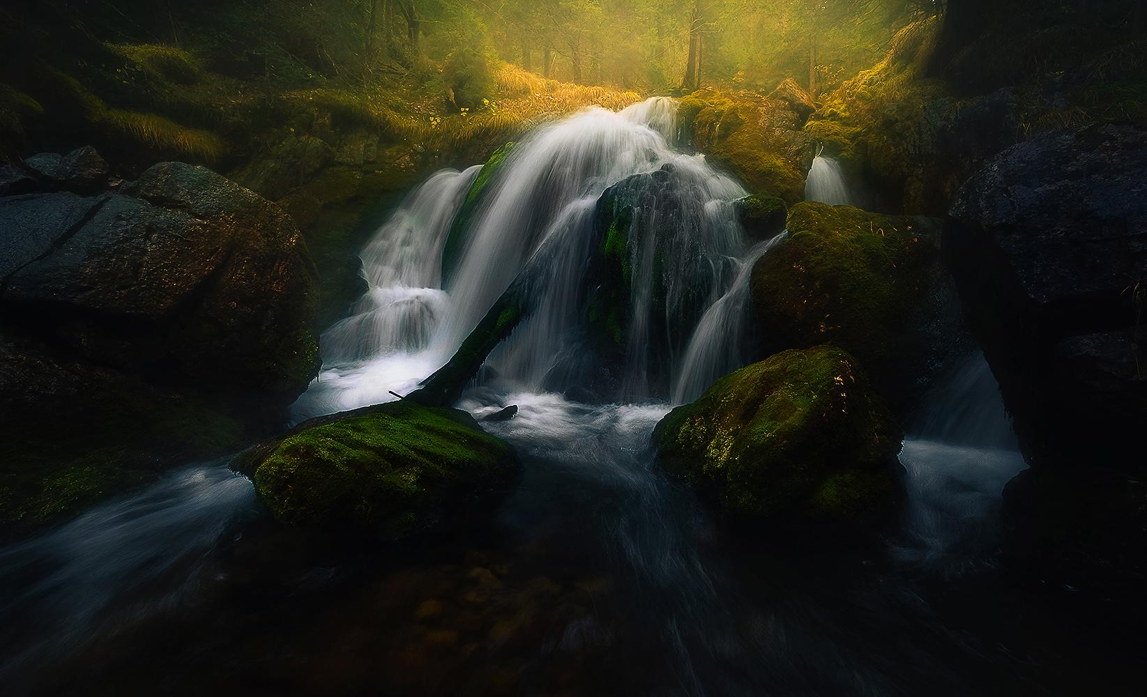 . : dunkle Wasser III : .