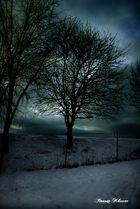 Dunkler Winter