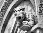 Duomo de Pise. Détail de sculpture