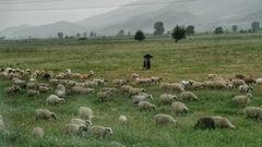 Durch Albanien