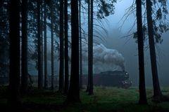 Durch den Nebel