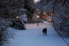 Durch den weißen Winterwald