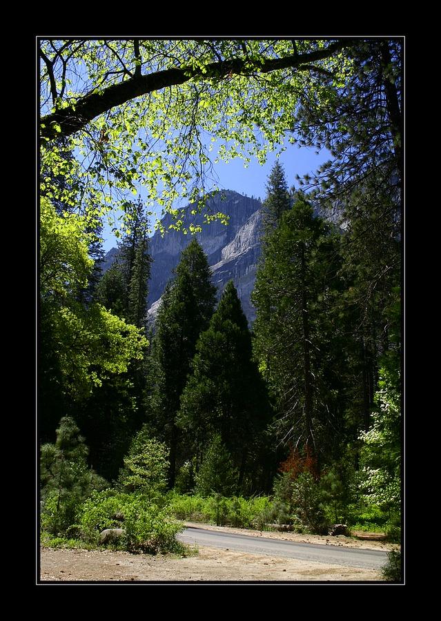 Durch den Yosemite