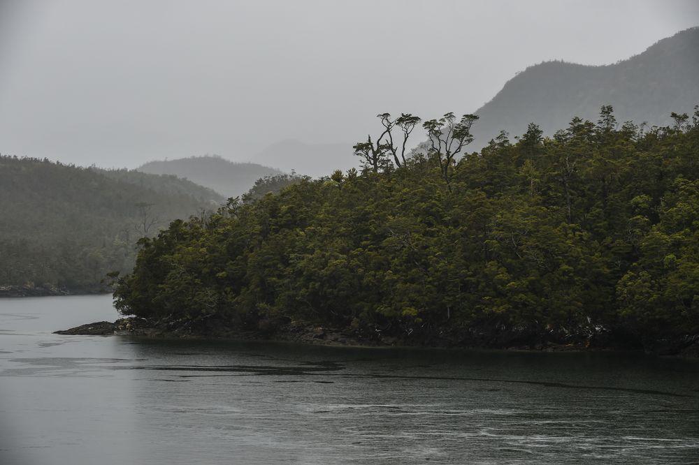 Durch die engen Fjorde  Chiles                 DSC_5867-2