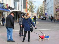 Durch ihre Hund kommen d'Leut zam