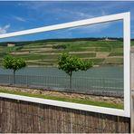 Durchblick am Rhein