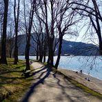 Durchblick auf den See