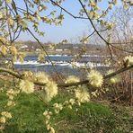 Durchblick auf die Ruhr