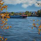 Durchblick in Richtung Rhein
