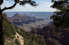 Durchblick zum Grand Canyon...