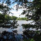 Durchblick zum Kiebitzsee