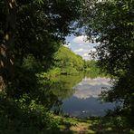 Durchblick zum Teich