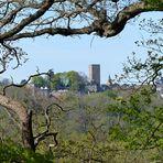 Durchblick zur Burg Blankenstein