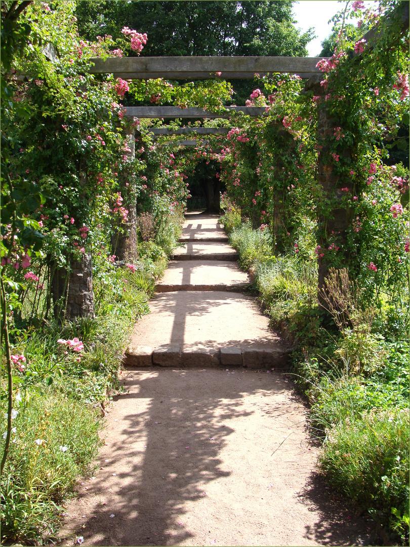 Durchblick-zur-Rosenlaube-