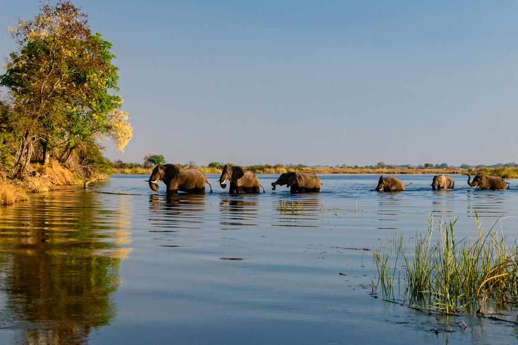 Durchquerung des Kavango