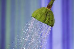 Duschen mit Lotuseffekt