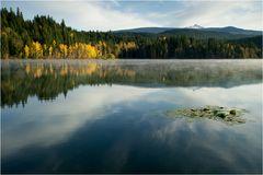 Dutch Lake III