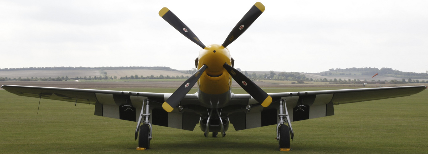 Duxfort 2011 P-51D Mustang