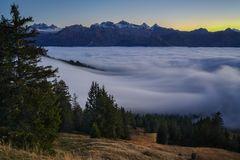 Dynamic fog...