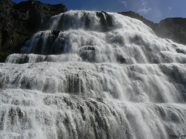 Dyndjandi Waterfall - Islanda