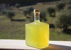 è pronto il limoncello - is ready the limoncello