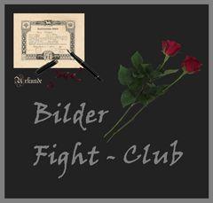 Fight - Club Bilder