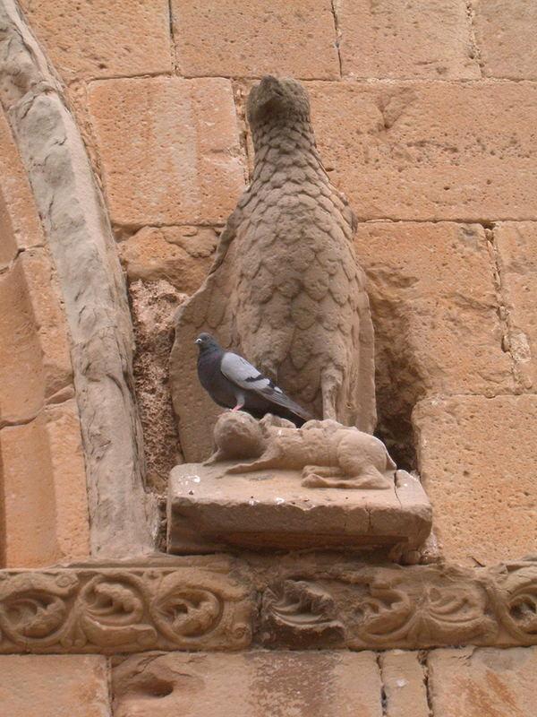 Eagle and pidgeon