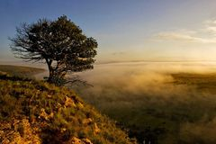 early morning in Africa